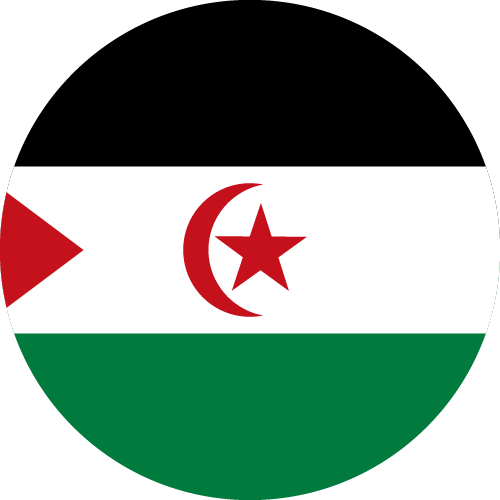 Download free vector flags of Western Sahara at VectorFlags.com