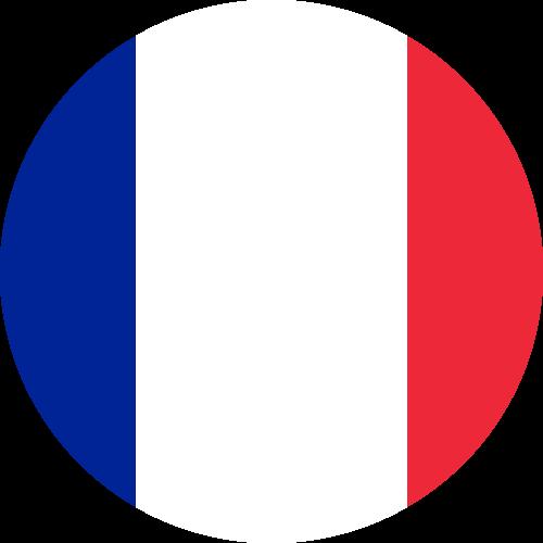 Free Vector Flag of fr-circle-01