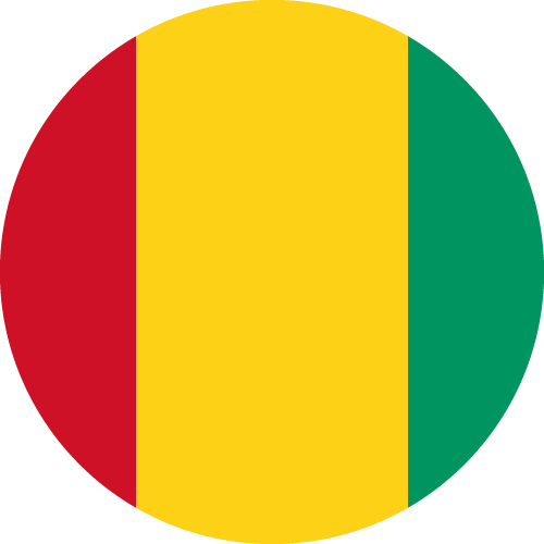 Download free vector flags of Guinea at VectorFlags.com