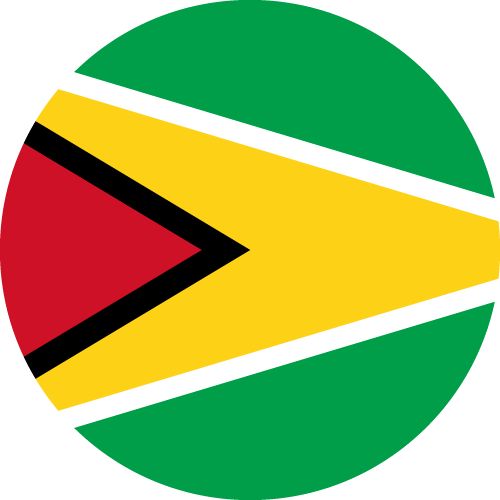 Download free vector flags of Guyana at VectorFlags.com