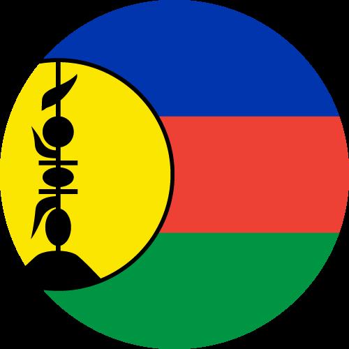 Free Vector Flag of nc-circle-01