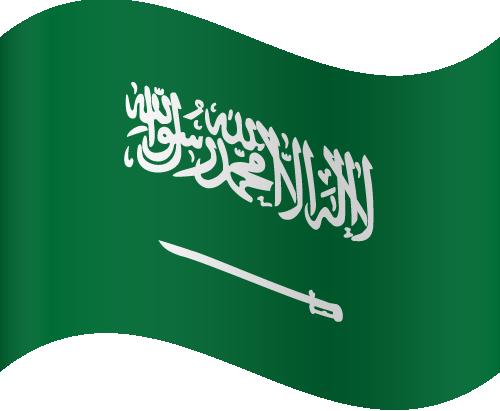 Free Vector Flag of sa-wave-01