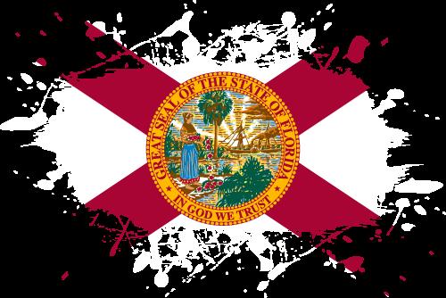 Free Vector Flag of us-fl-splat-01