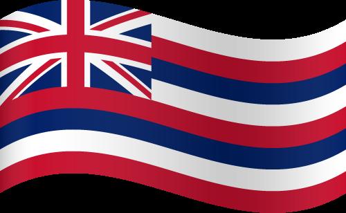 Free Vector Flag of us-hi-wave-01